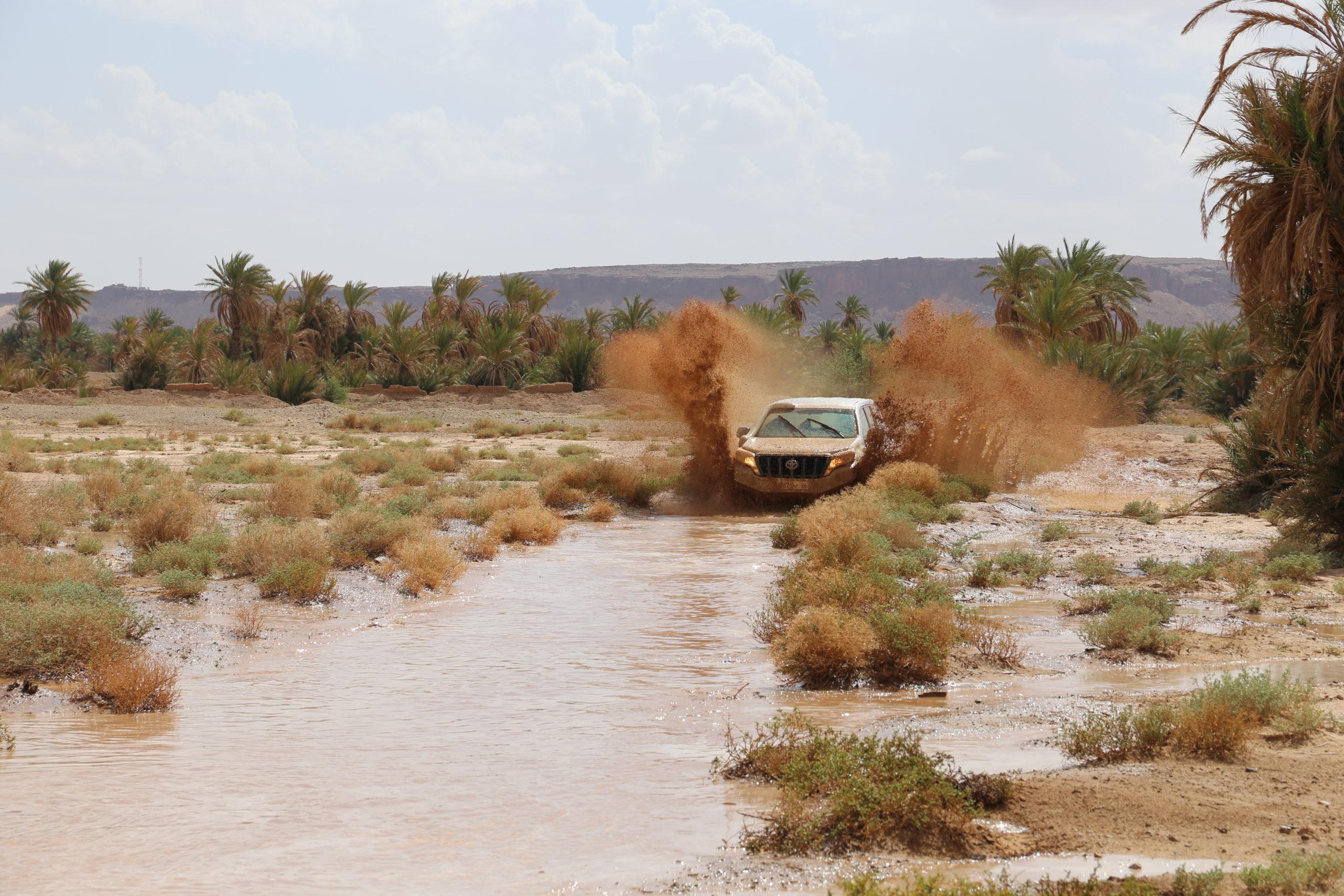 Exemples de circuits - départs de Ouarzazate et Agadir